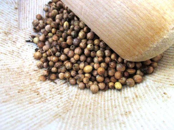 coriander, suribachi
